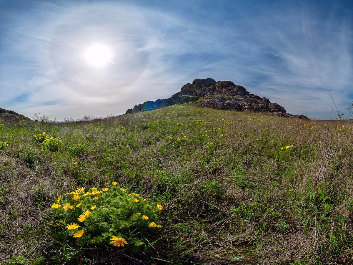 каменные могилы донецкая область