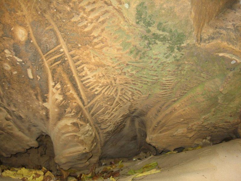 Наскальные рисунки каменной могилы
