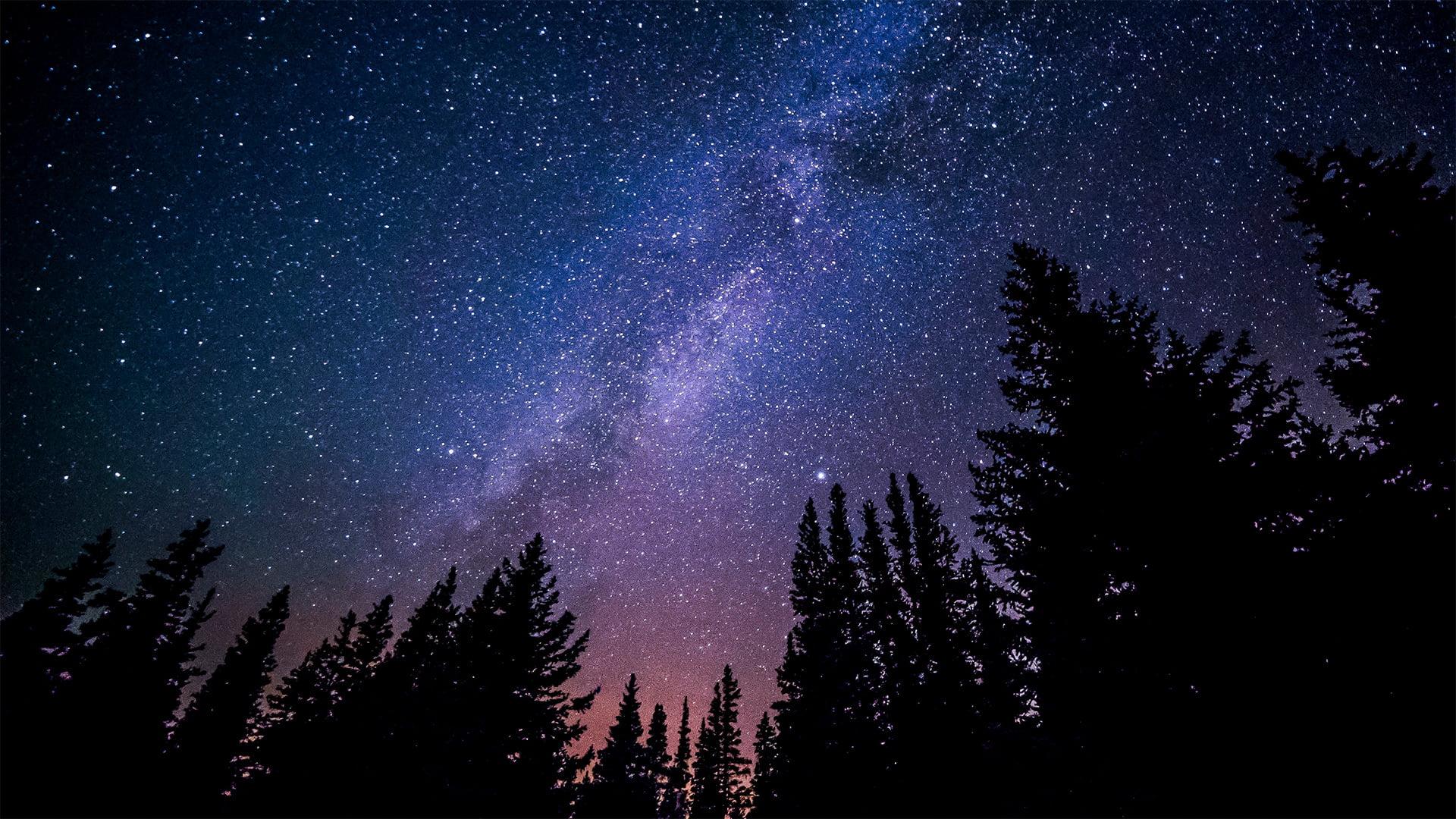 Древние курганы - проекция звездного действия