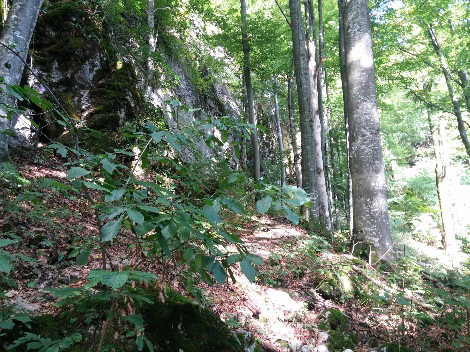 древняя пещера молочный камень