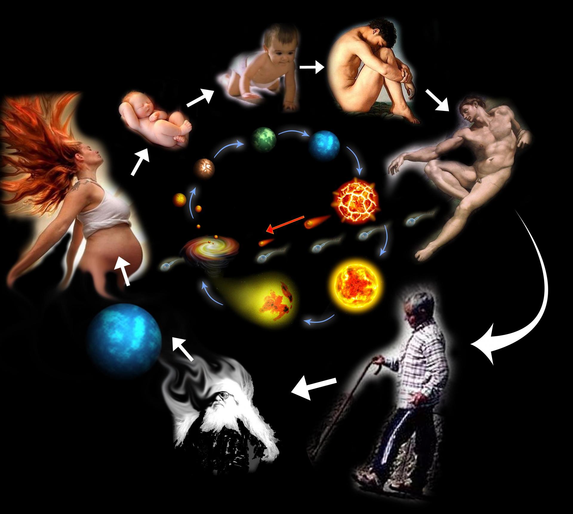 Циклы жизни человека