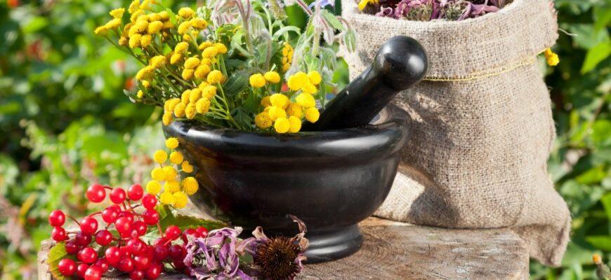Натуральные продукты и травы