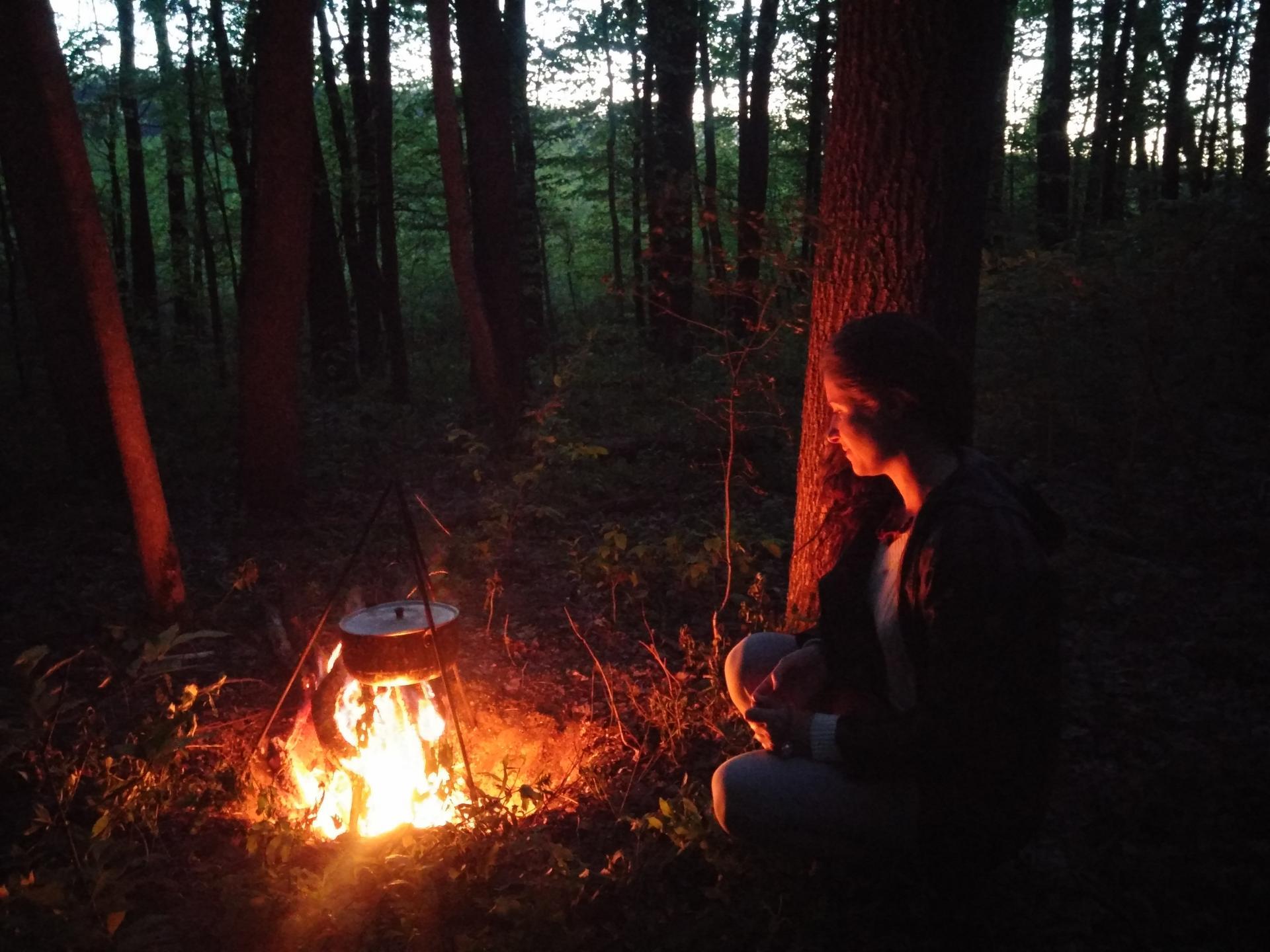 черный лес ночью