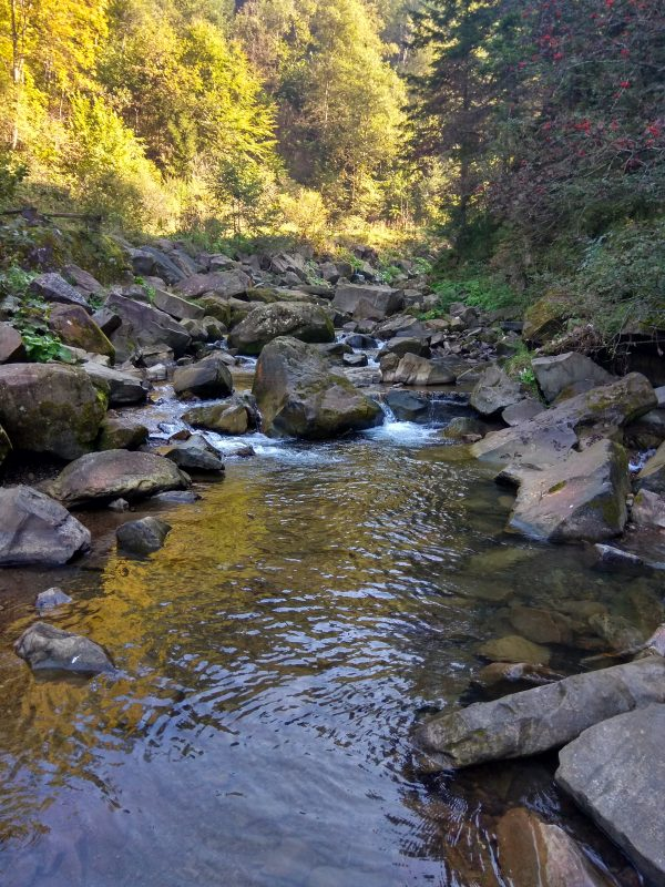 река каменка сколе