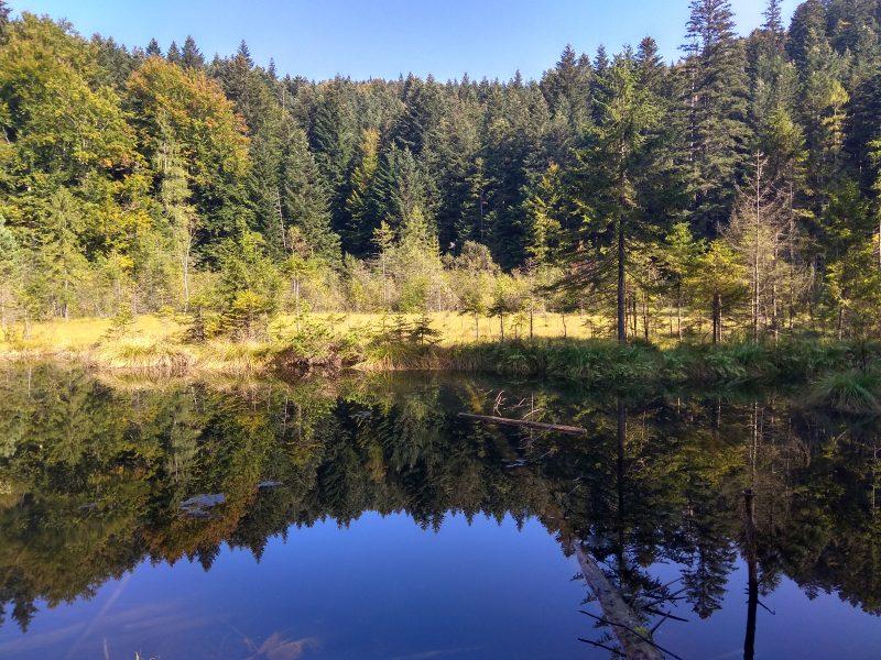 Журавлиное озеро
