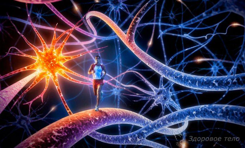 Воздействие бани на нервную систему