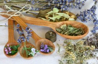 Лекарственные травы в бане