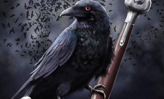 темный жрец - черный ворон