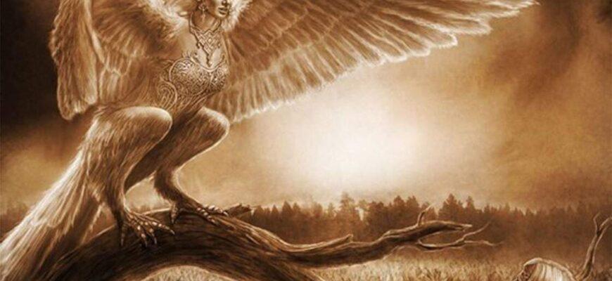 Птица Гамаюн картинка